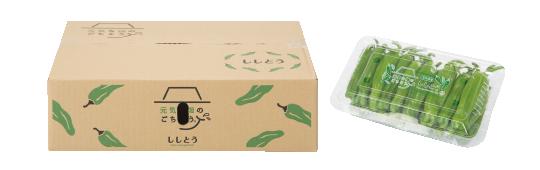 ししとう梱包ボックス