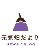 元気畑ブログ